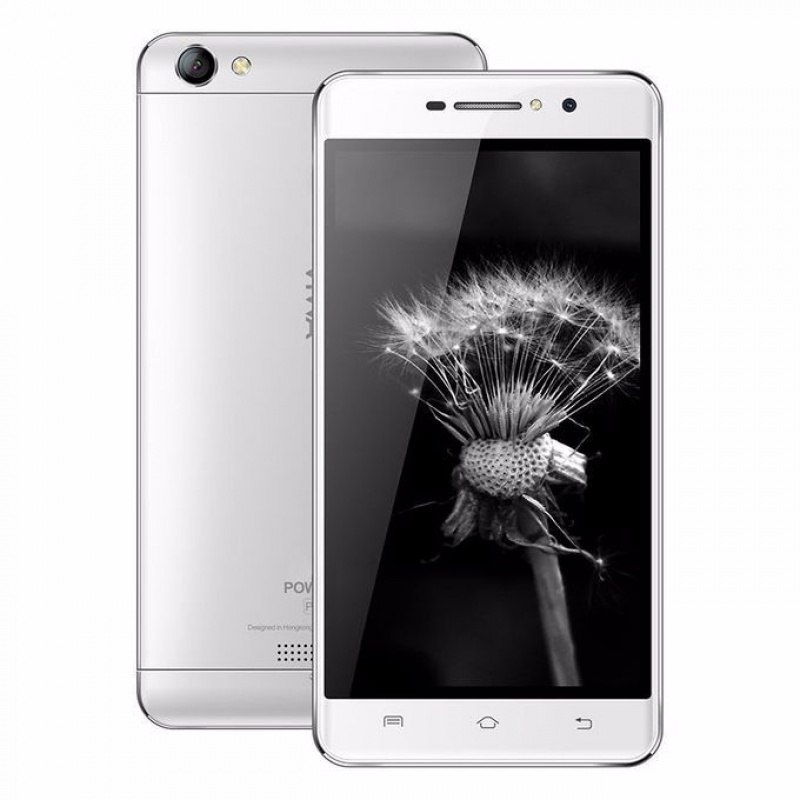 Telefon VIWA Power P1 Silver (1)